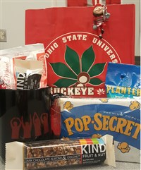 Buckeye Bundle Bag